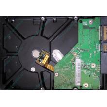 Б/У жёсткий диск 500Gb Western Digital WD5000AVVS (WD AV-GP 500 GB) 5400 rpm SATA (Кашира)