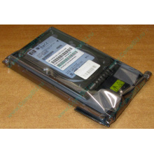 Жёсткий диск 146.8Gb HP 365695-008 404708-001 BD14689BB9 256716-B22 MAW3147NC 10000 rpm Ultra320 Wide SCSI купить в Кашире, цена (Кашира).
